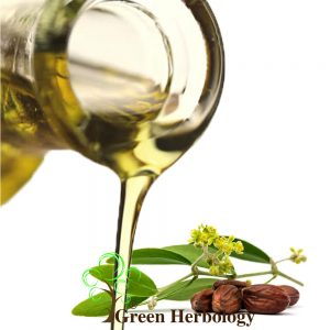 Pure Jojoba oil to heal wound, control oily skin, promotes hair grow