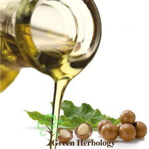 Pure Macadamia oil for UV protection, brightening skin, moisturizes skin