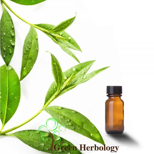 Tea Tree Essential Oil for reduce acne, cures dry skin,pain reliever