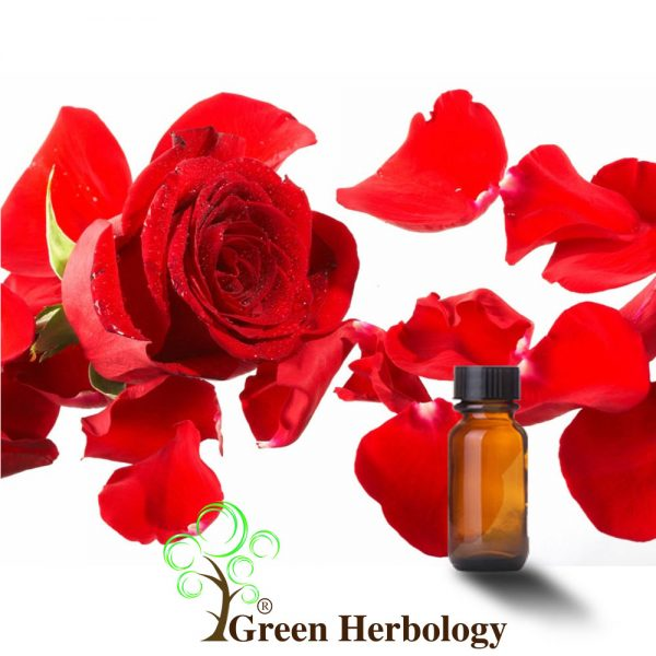 Pure Rose Essential Oil for tighten skin, prevents wrinkles, fades scar