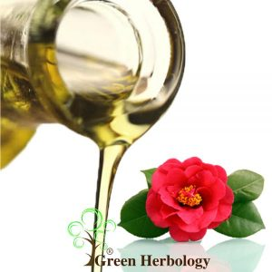 Pure Japan Camellia Oil for heals burn,damage lips,block UV rays