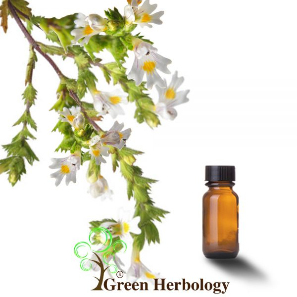 Eyebright Extract calm eye inflammation, minimizes pores, treat under eye puffiness
