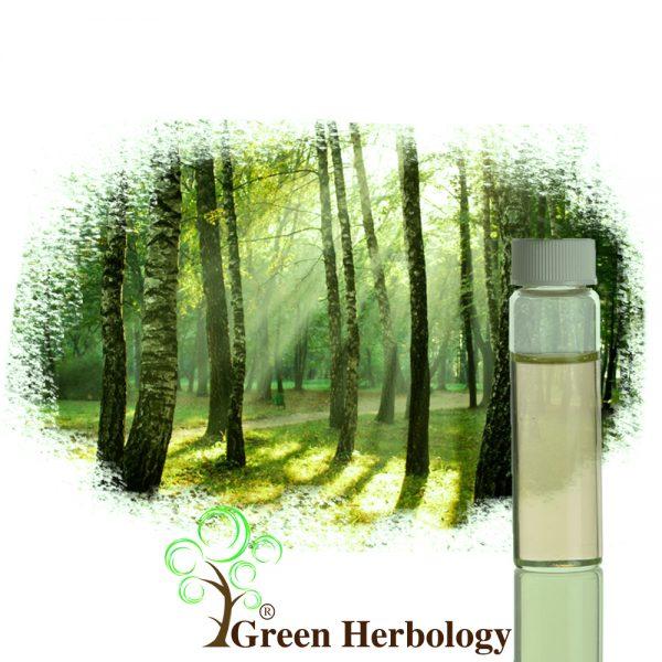 forest fragrance oil