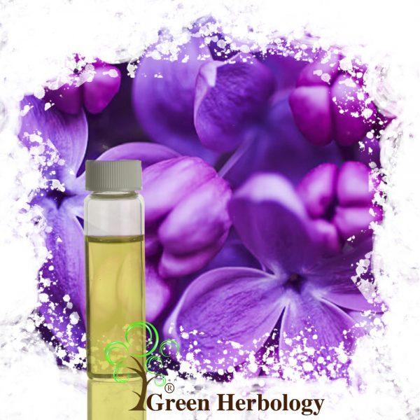 Velvet Lilac Fragrance Oil