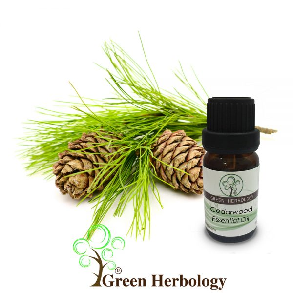 Cedarwood Essential Oil for calming, relieve stress and tension