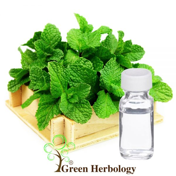 Peppermint Hydrosol Floral Water
