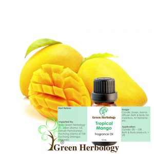 Tropical Mango Fragrance Oil
