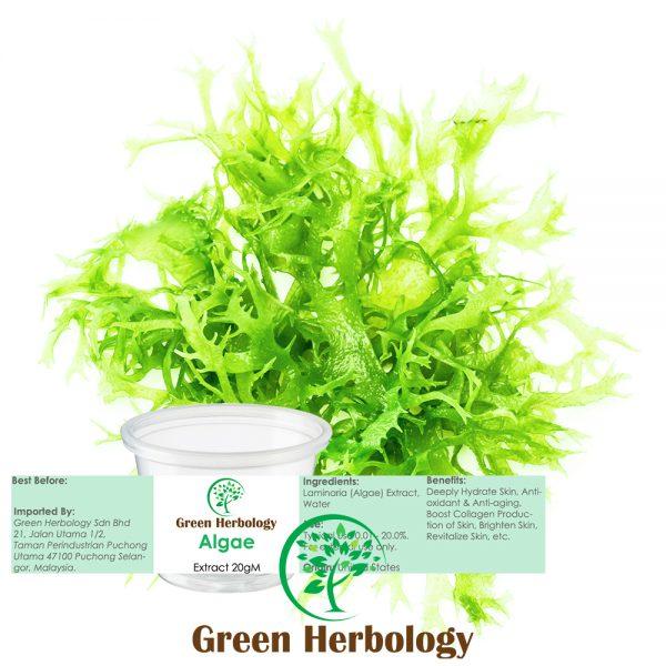 Algae Extract 20g